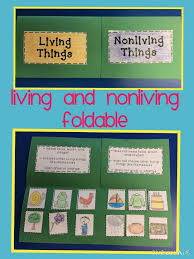 Best 25+ Living and nonliving ideas on Pinterest | Living and ...