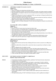 Sample Resume For Forex Manager FX Sales Resume Samples Velvet Jobs 1