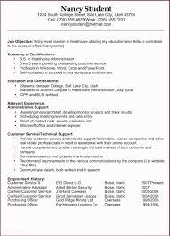Objective Summary For Resumes Customer Service Resume Summary 650 897 Resume Summary For
