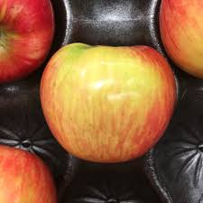 aldi near rice lake wisconsin united states about 458 days ago 2 12 18 sharer s ments honeycrisp apples spotted at aldi crisp and tasty usa grown