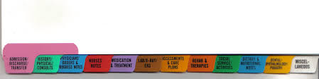 Patient Chart Tabs Nh 501 Chart Divider