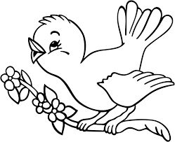Small Picture Bird coloring pages perching on branch ColoringStar
