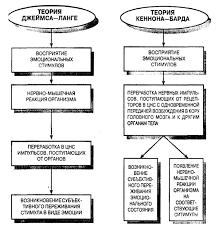 Физиологические основы и психологические теории эмоций Основные положения в теории Джеймса Ланге и теории Кеннона Барда