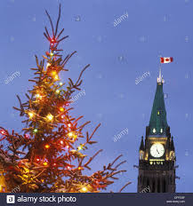 Peace Tower of Canadian Parliament building and Christmas tree. Ottawa.  Ontario. Canada