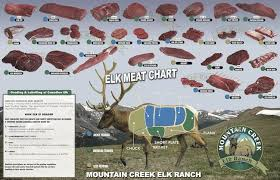 Wild Game Meat Cutting Chart Pin On Wild Game Recipes