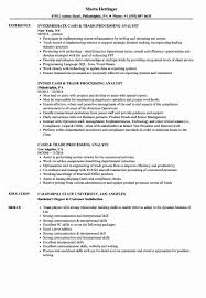 Process Analyst Sample Resume Process Analyst Sample Resume Awesome Cash Trade Processing 18