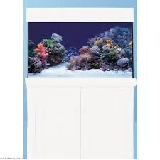 Aqua One Replacement Light Unit Aqua One Aquareef 400 White Seahorse Aquariums Ltd