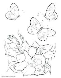 Butterflies And Flowers Coloring Pages Flowers Coloring Pages For