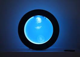 cubic orbit 20 with blue ledoon jellyfish