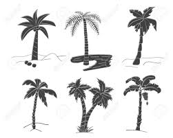 熱帯の黒いシルエットのベクター セットヤシの木葉を残します熱帯自然の手描きデザイン要素です様