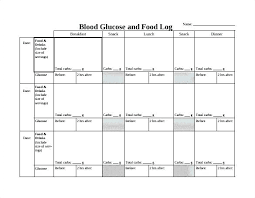 excel food log images of printable blood glucose template daily macros for exce excel inventory tracking template food control log tracker