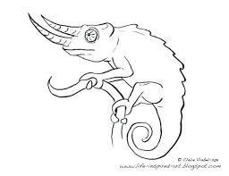 Chameleon Coloring Page Pdf Veiled Marker Pages Download Stock