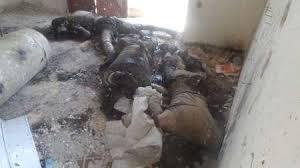 Image result for هلاکت 60 تروریست تکفیری در غرب موصل به دنبال حمله جنگندههای ارتش عراق