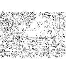 Herfst Kleurplaat In Het Bos Vallen De Blaadjes Van De Bomen De