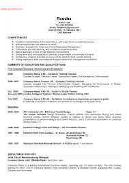 Examples Of Resumes The Incredible Job Resume Summary Format Web