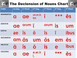 Plural Nouns Chart The Declension Of Nouns Chart Ppt Download