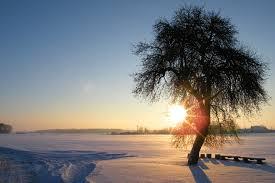 Résultats de recherche d'images pour «soleil d'hiver»