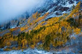autumn mountains backgrounds. Colorado Forest Maroon Bells Usa Woods Autumn Mountains Snow Wallpaper Hd Nature Beauty - 4867x3244 Backgrounds E