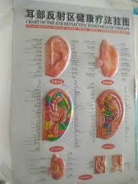 Sri Sai Baba Drugless Theraphy Auricular Acupuncture