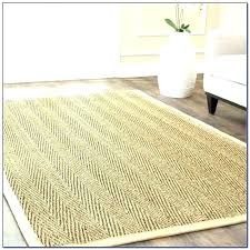 wool sisal rugs rug reviews basic pottery barn and medium image for excellent restoration hardware wool sisal rugs