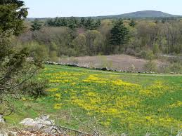 Image result for bing images west hill park uxbridge ma