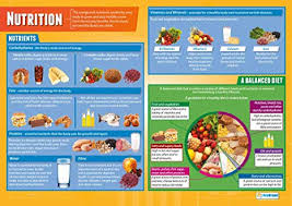 Food And Its Nutrients Chart Nutrition Pe Posters Gloss Paper Measuring 850mm X 594mm A1 Physical Education Charts For The Classroom Education Charts By Daydream