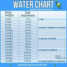 Can Water Make You Lean And Slim Water Challenge Water