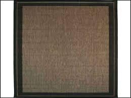 outdoor sisal rug outdoor rug rugs gallery outdoor sisal rug outdoor sisal rugs 9x12 outdoor synthetic