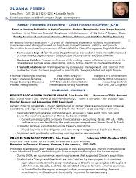 Chief Financial Officer Resumes Resume Samples Chief Financial Officer Multi Industries