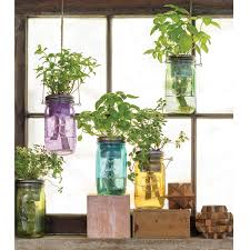Hydroponic Kitchen Herb Garden Mason Jar Indoor Herb Garden Grow Your Own Herbs Uncommongoods