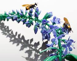 "Wesley Fleming on Twitter: ""See ""Veronica longifolia"" tonight  @harvardmuseum, I'll be discussing #Blaschka #glassflowers at Glass Flowers  Soirée… """