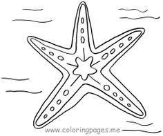 Small Picture Starfish Coloring Pages netanimalsfishesstarfishes