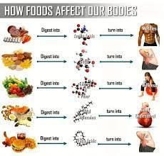 Fitness Diet Chart Gym Food For Women