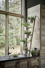Leaning ladder plant stand