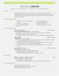 Free 59 Word 2010 Resume Template Free Free Professional Template