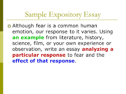 everything you need to know about the test before you take it sample expository essay