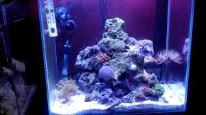 120 watt led aquarium lights review