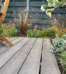 Media posted by LoveYourGarden