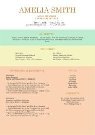 Job Resume Template Immense Resume Mycvfactory