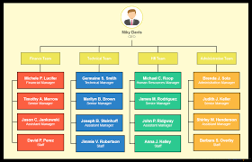 Company Organizational Structure Chart Types Of Organizational Charts Organization Structure