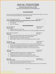Examples Of Customer Service Resumes Inspirational New 10 Fresh Good