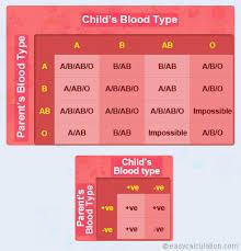 Parents Blood Types Chart