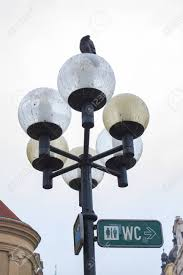 Wc For People And Pigeons Lamp With Sitting Pigeon And Pointer
