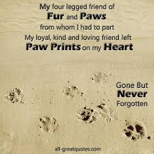 Loss Of Pet Quotes Delectable 48 Best Dog Loss Quotes On Pinterest Dog Loss Pet Loss Quotes 48