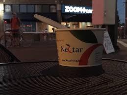 photo of nectar frozen yogurt lounge portland or