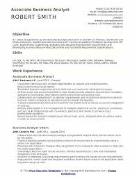 Sample Resume For Business Analyst Delectable Qlikview Developer Resume Associate Business Analyst Resume Sample