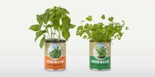 Hanging Kitchen Herb Garden 9 Best Indoor Herb Gardens In 2017 Indoor Gardens For Growing Herbs