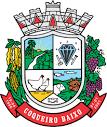 imagem de Coqueiro Baixo Rio Grande do Sul n-6