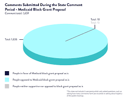 Tennessee Medicaid Block Grant State Comment Period Analysis