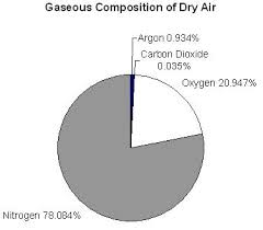 Air Composition Pie Charts A Recipe For Air Activity